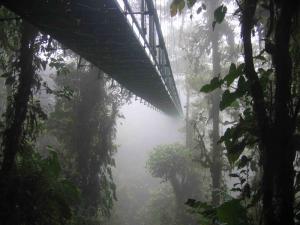Sustentabilidade na Amazônia Brasileira